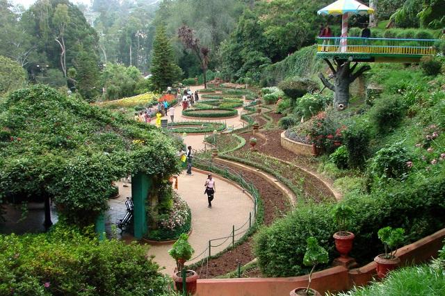 Vẻ đẹp thơ mộng của vườn thực vật Ấn Độ