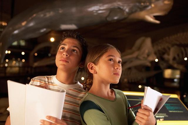Bảo tàng Khoa học Tự nhiên Denver, nơi giúp tư duy trẻ em phát triển tốt hơn