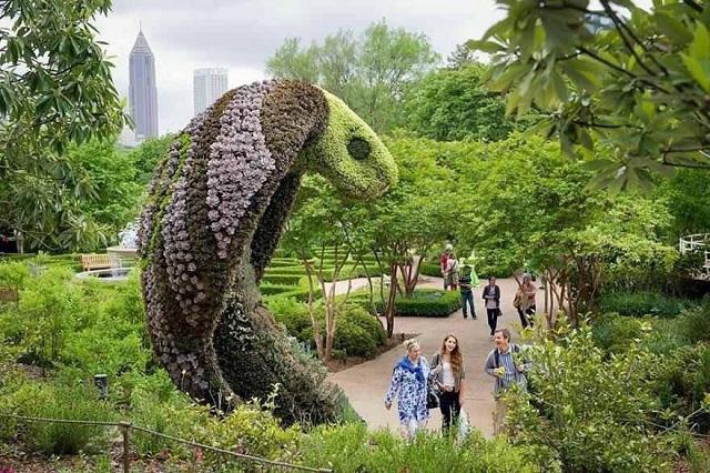 Atlanta Botanical Garden - điểm tham quan tuyệt vời cho các tâm hồn lãng mạn, yêu thiên nhiên
