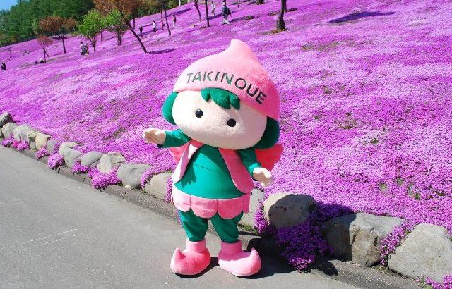 Những trải nghiệm tuyệt vời khi đến Hokkaido vào mùa xuân