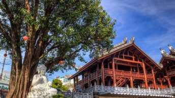 Những địa điểm du lịch ở Buôn Ma Thuột lý tưởng cho ngày Tết