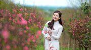 Mách bạn những điểm chụp hình tết đẹp nhất ở Hà Nội